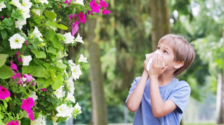 Evite alergias da primavera com Vivenso!