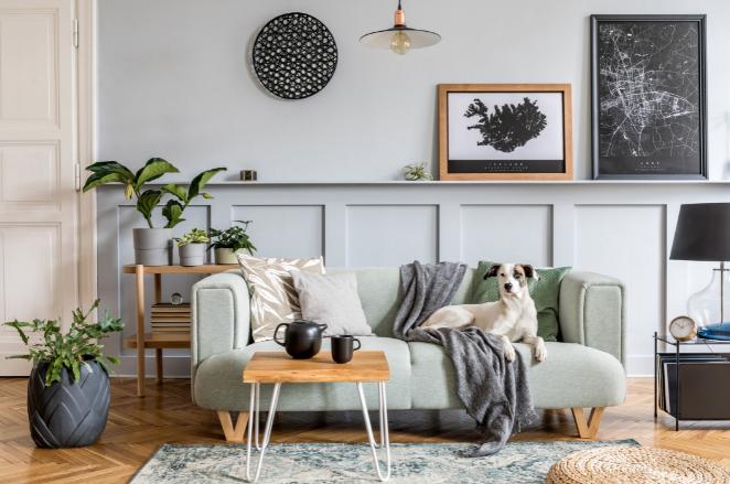 Já pensou como a decoração pode ajudar a evitar crises alérgicas?
